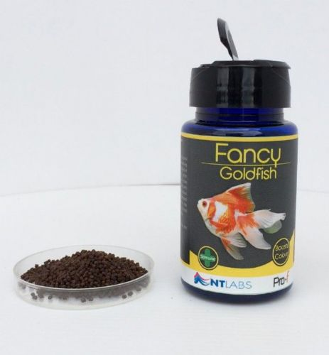 NT Labs Pro-f Fancy Goldfish 50g